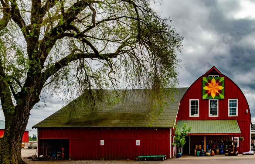 "The ""Sunflower Block"" at Twin Oaks Nursery in Hillsboro, OR"