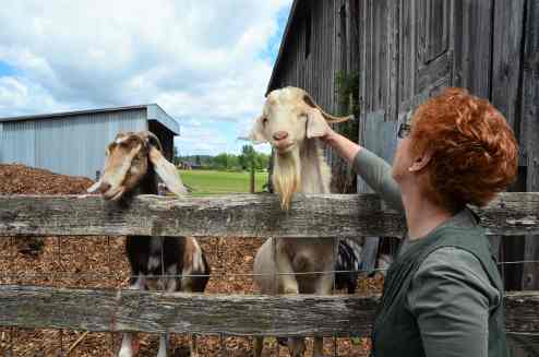 Molly Reichen pets the farm's pet goats