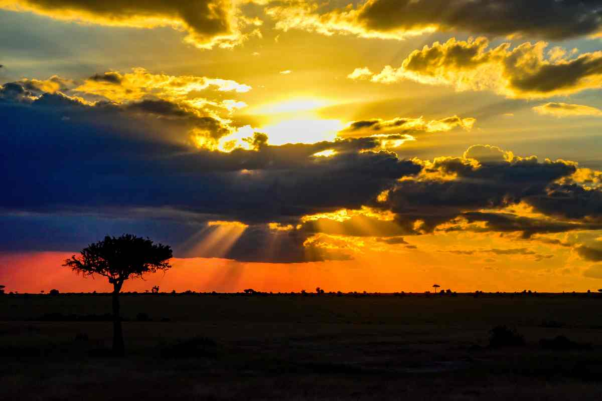 PhotoPOSTcard: A Classic African Sunset
