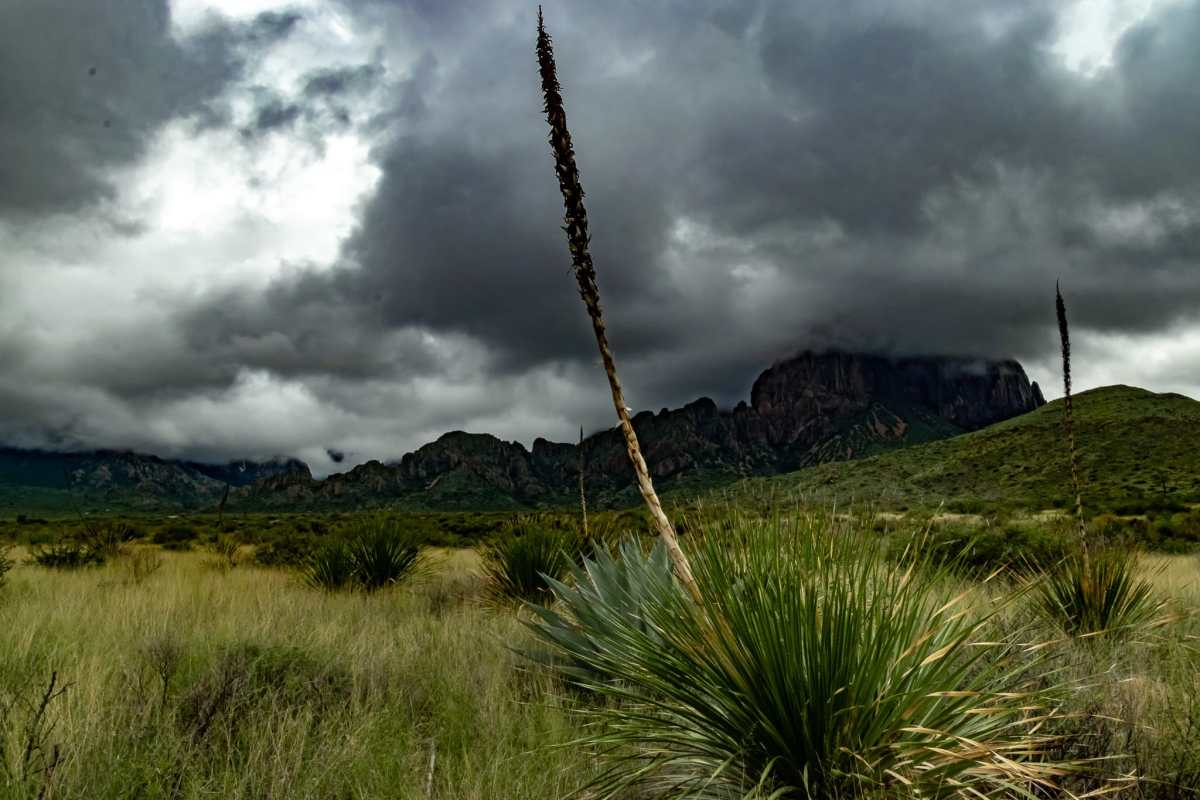 PhotoPOSTcard: Storm Clouds Over the Chisos