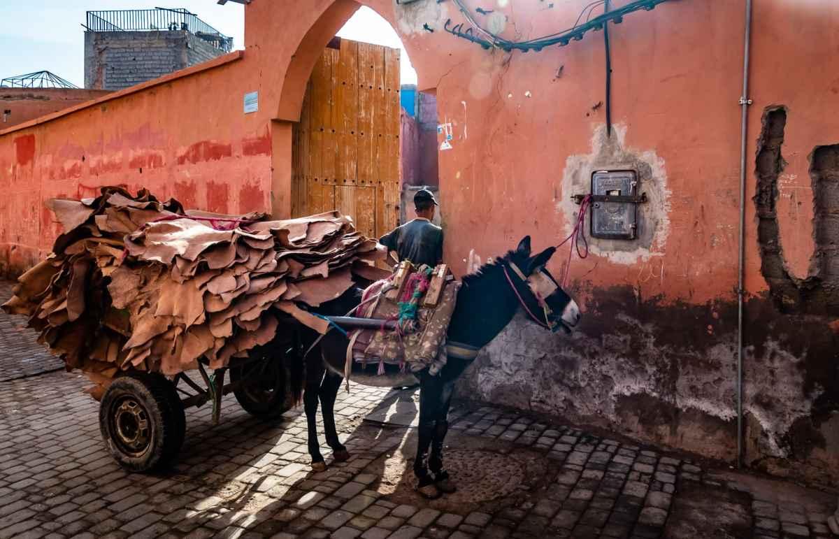 PhotoPOSTcard: Modern Transport in the Marrakesh Medina