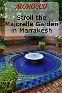 Take a stroll through the Majorelle Garden in Marrakesh #majorellegarden #marrakesh #morocco #yvessainlaurent