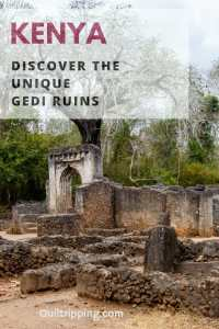 Discover the amazing and not very well known Gedi Ruins on Kenya's coast