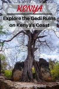 Visit the unique historic Gedi Ruins on Kenya's Indian Ocean coast.