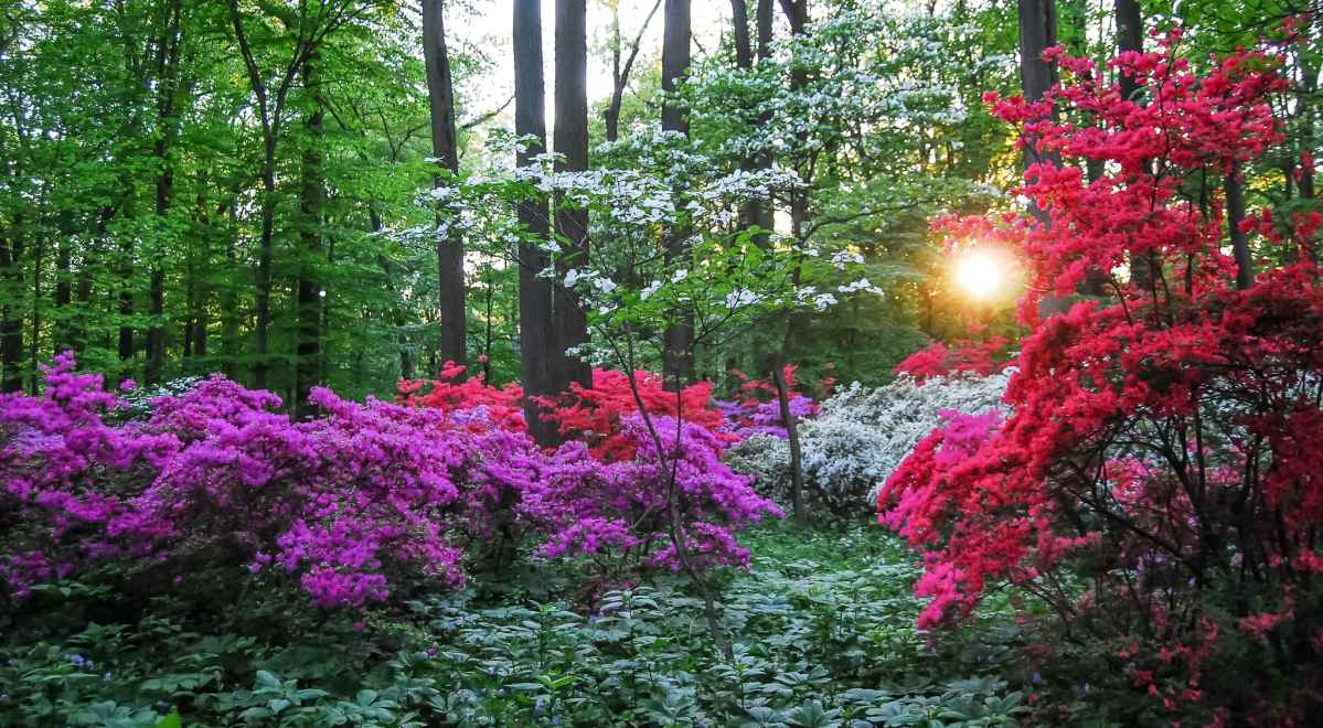Spring in the Brandywine Valley – My Travel World International Magazine Article
