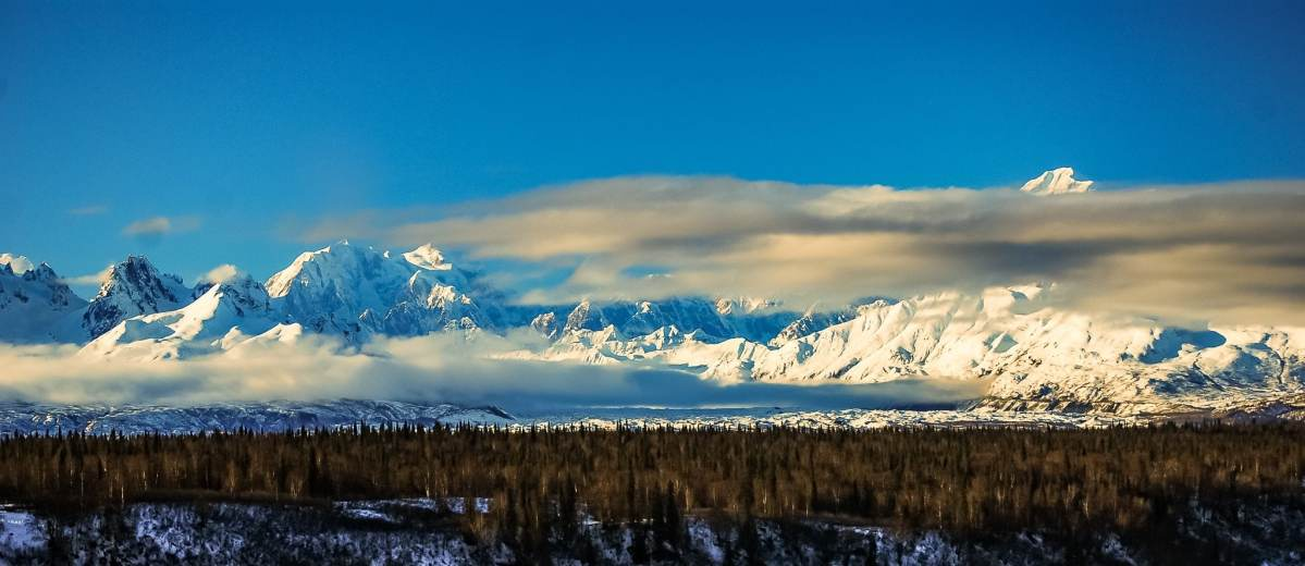 PhotoPOSTcard: Denali in Winter