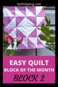 An easy quilt block of the month program - block 2