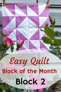 Sharing my 2nd block in my block of the month experiment #quilt #blockofthemonth