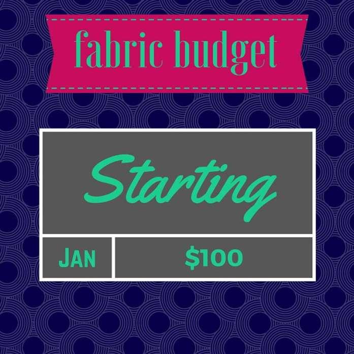 fabric budget 2016