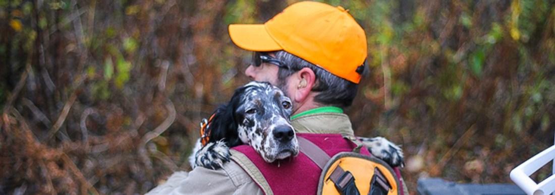 Upland-Hunting-Dog