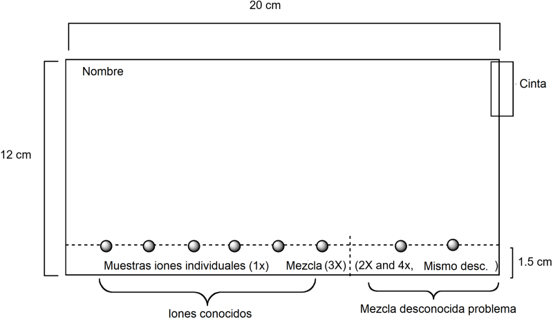 Papel para cromatografia