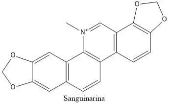 Estructura 2D de la sanguinarina