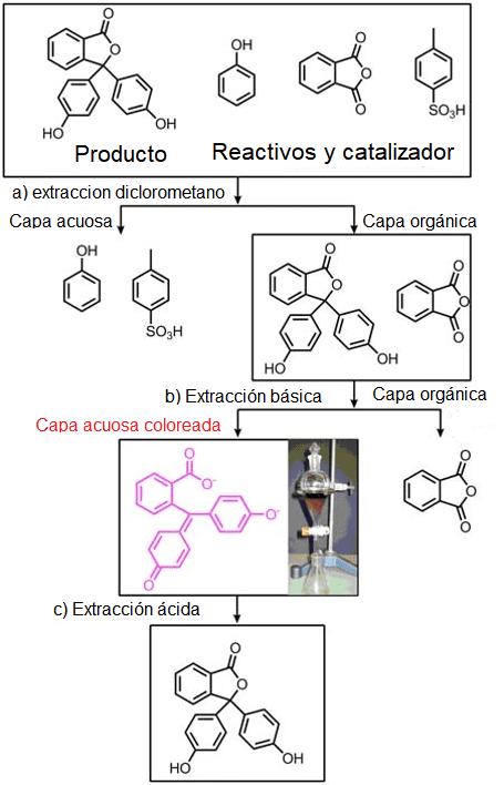 Esquema de extracción de fenolftaleína