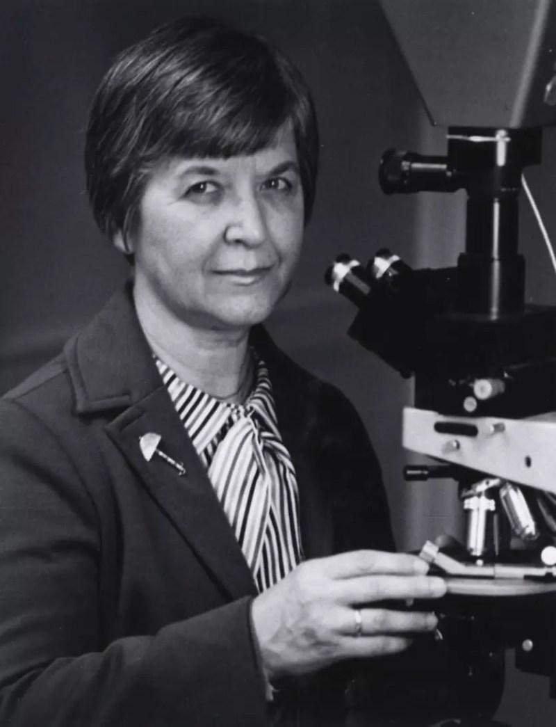 Stephanie Kwolek en un microscopio polarizador