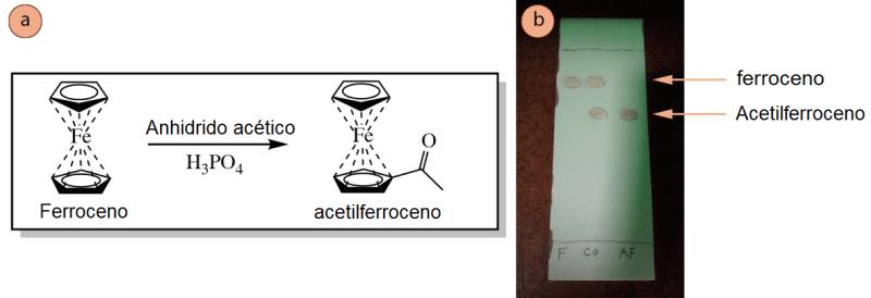 Figura 5: a) Esquema de reacción de la acetilación del ferroceno, b) Placa de TLC (visualizada con luz UV) con 3 carriles: F para el ferroceno puro, Co para el co-punto y AF para el producto de acetil-ferroceno.
