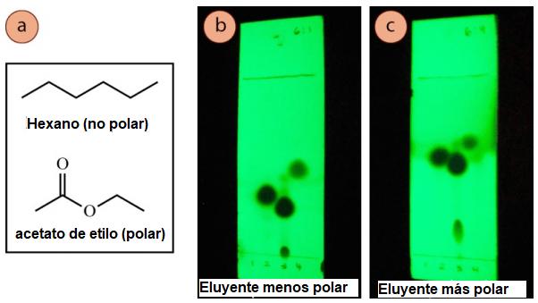 Figura 7: a) Estructuras de hexano y acetato de etilo, b) Tres compuestos visualizados por la luz UV y ejecutados con mezclas de hexanos: acetato de etilo 6:1, c) Los mismos tres compuestos con una proporción de 3:2 (más polar).