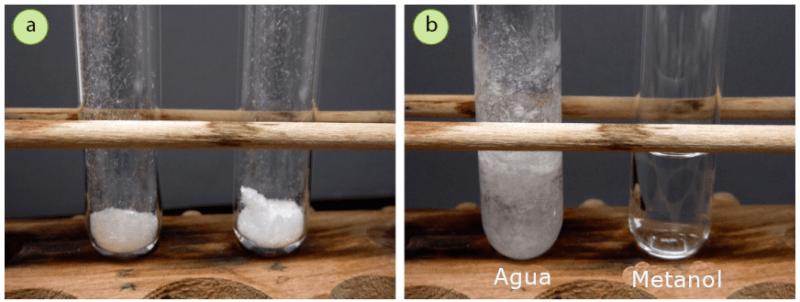 Figura 8: a) 100 mg de ácido trans-cinámico en cada tubo de ensayo, b) El tubo de la izquierda contiene ácido trans-cinámico con agua (insoluble) y el de la derecha contiene ácido trans-cinámico con metanol (soluble).