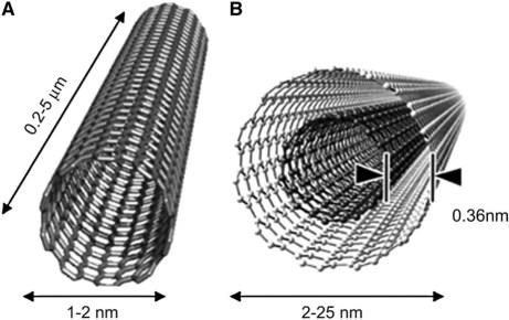 Una visualización del material; para que se hagan una idea de la escala, este material es casi 50.000 veces más pequeño que un cabello humano.