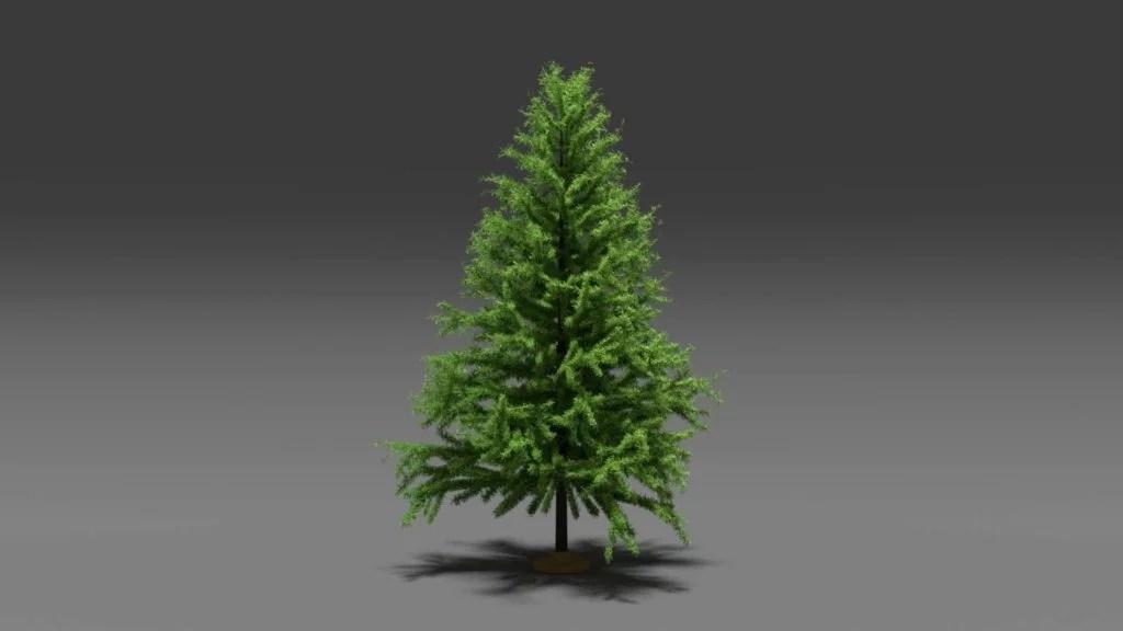 Pine Tree Free 3D Model In Blender Format Quince Media