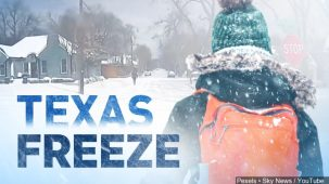 Image result for texas freeze