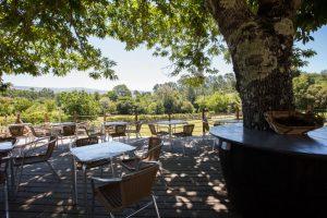 Esplanada do Castanheiro - Quinta do Caminho: Esplanada do Castanheiro