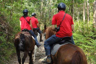 horse-riding-week-05