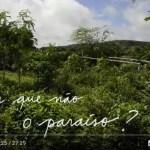 Marsha Hanzi- Permacultura no Sertão e porque não ajardinar o mundo?