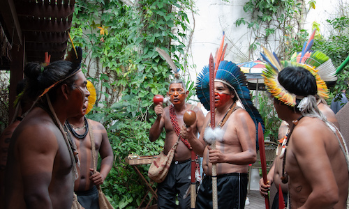 cultura curitiba arte exposições biblioteca e a cultura brasileira