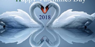 Valentines Day Images 2018 #Valtinesdayimages2018 #Valentinesdayimages #Valentinesday2018 quintdaily.com