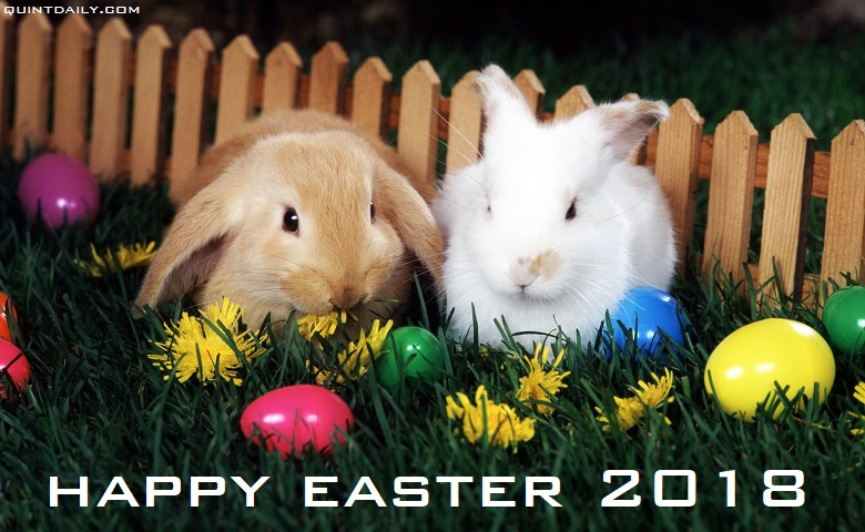 Happy easter wishes 2018 happy easter greetings tech2 happy easter wishes 2018 happy easter greetings m4hsunfo