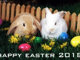 Easter Wishes 2018 #happyeasterimages #easterimages2018 #easter2018 quintdaily.com