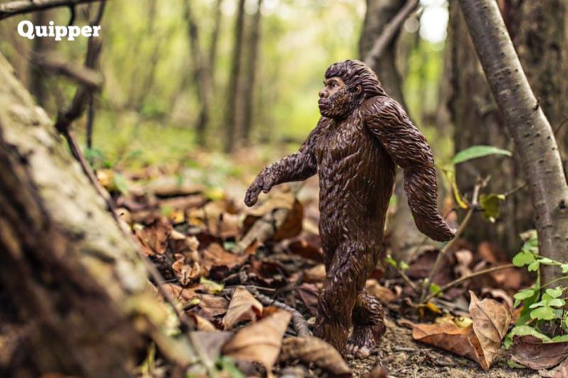 Belajar Contoh Soal Essay Biologi Sma Kelas 12 Bab Teori Evolusi Lengkap Dengan Jawabannya