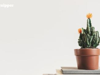 13 Contoh Soal Biologi SMA Tentang Pertumbuhan dan Perkembangan Pada Tumbuhan