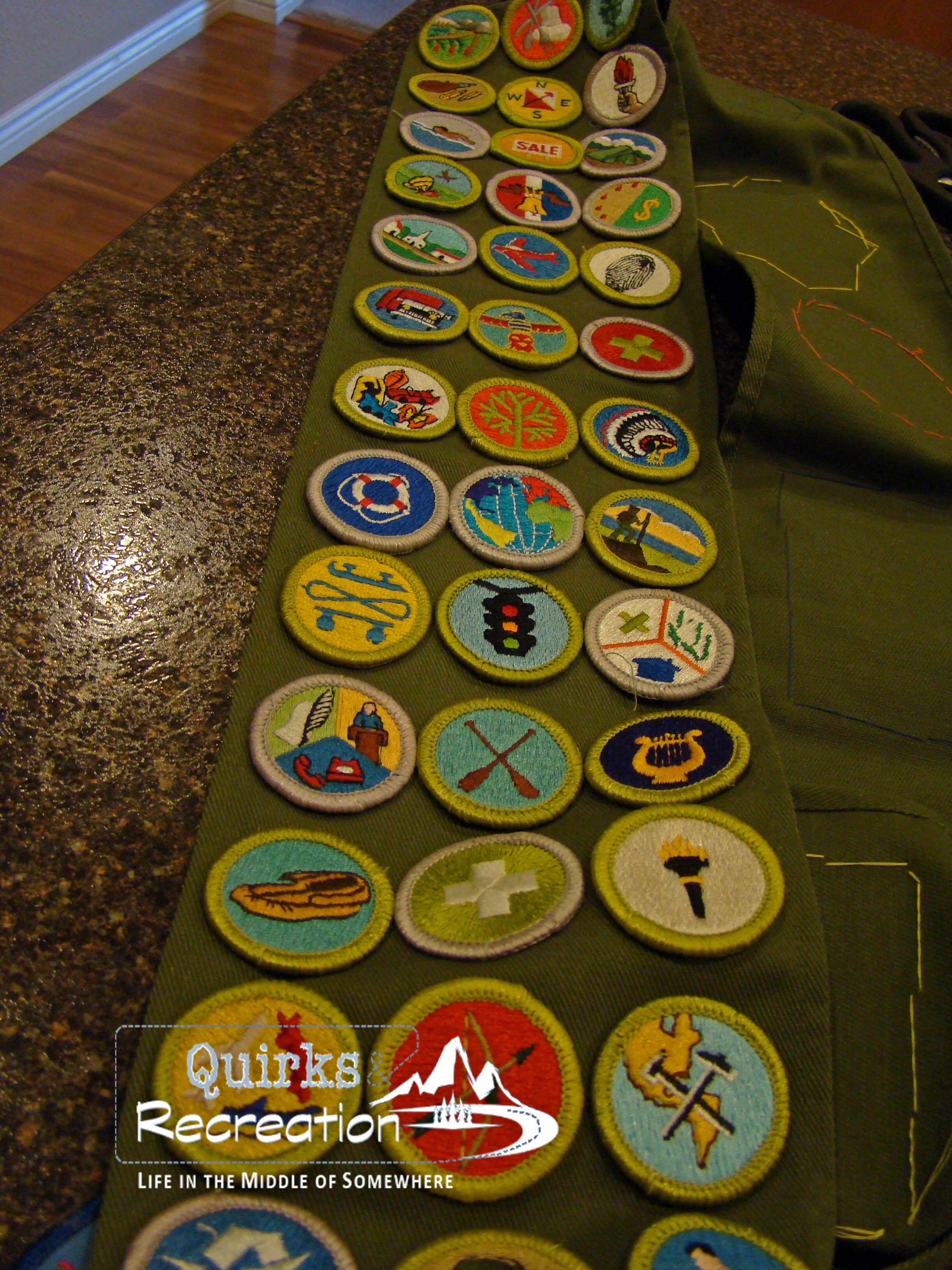 Diy Boy Scout Merit Badge Specimen Art