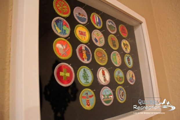 ...and now Boy Scout Merit Badges Specimen Art