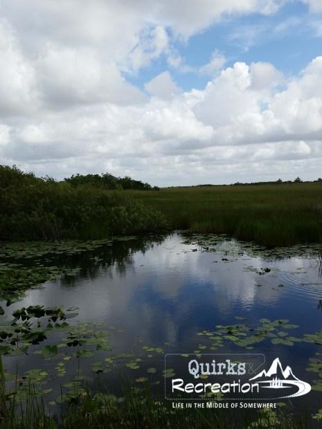 Everglades National Park view