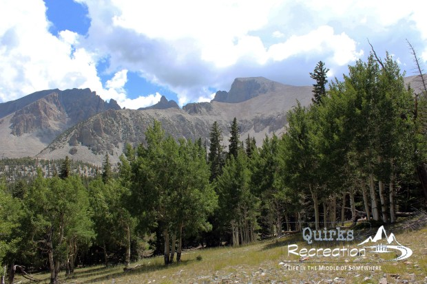 Meadow in Great Basin National Park with Wheeler Peak in the background