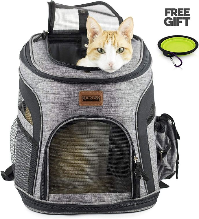 cat  backpack 1