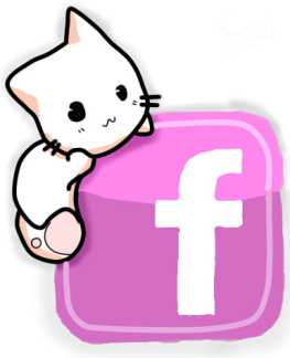 cat products you've seen on facebook