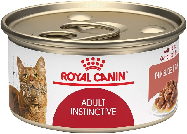 best cat food royal canin 1