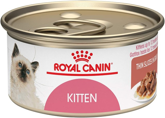 food for new kitten royal canin