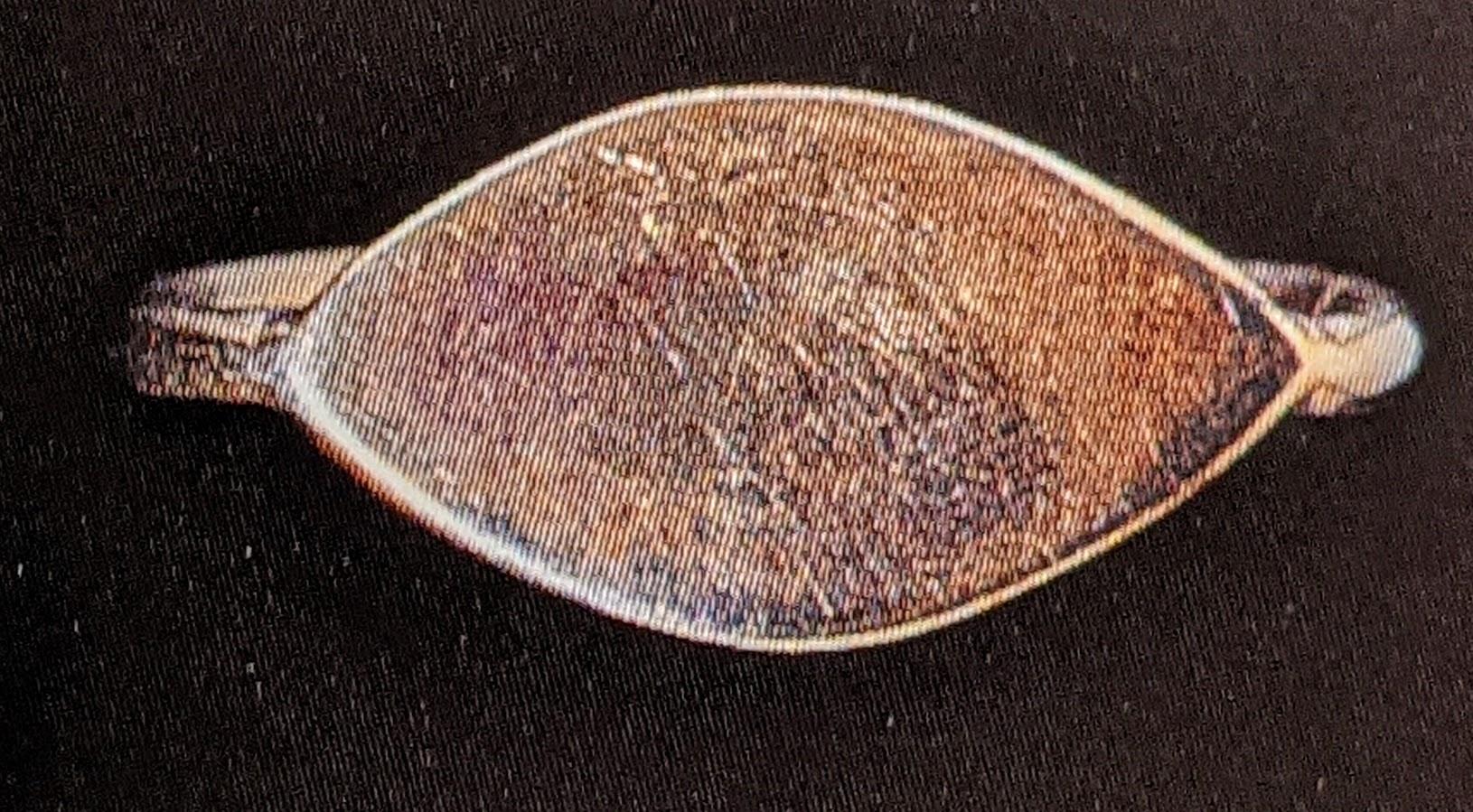 Electrum ring
