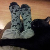black-cat-cuddling-black-cat-socks
