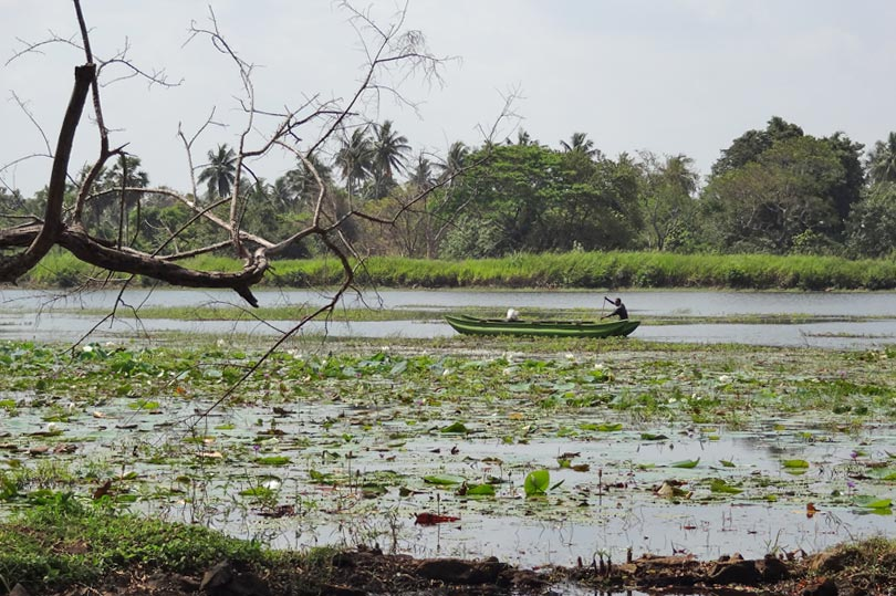 Lake at Chaaya Village Habarana