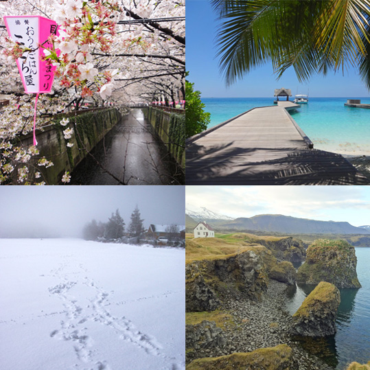 The four seasons - spring, summer, autumn, winter