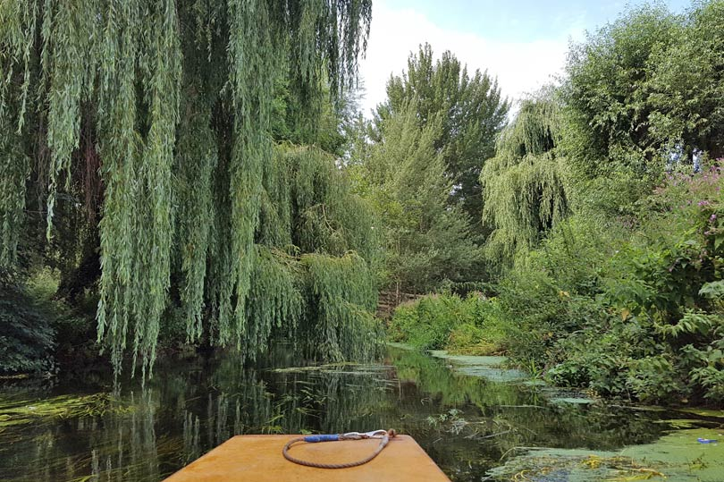 Peaceful punting