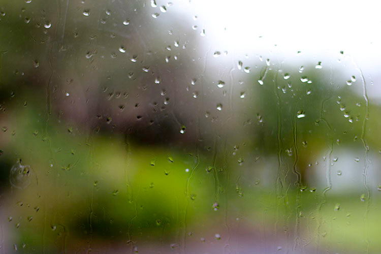 Rainy day, rain drops on the window.