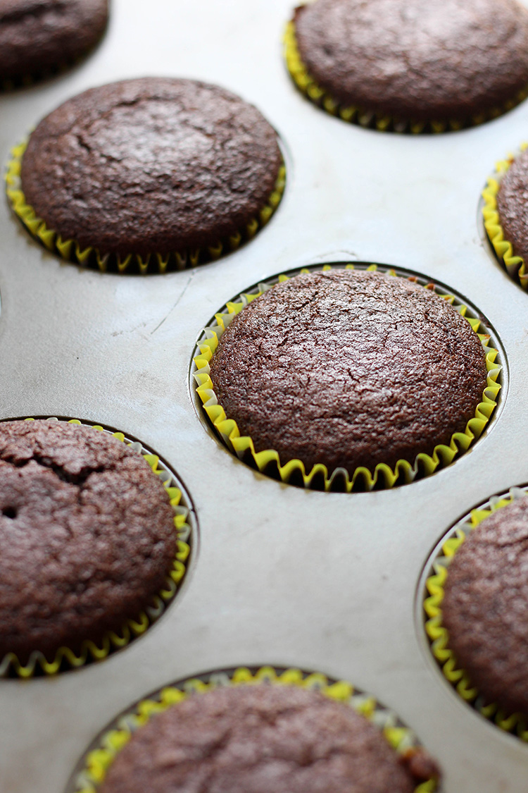Chocolate cupcakes, fresh out of the oven.