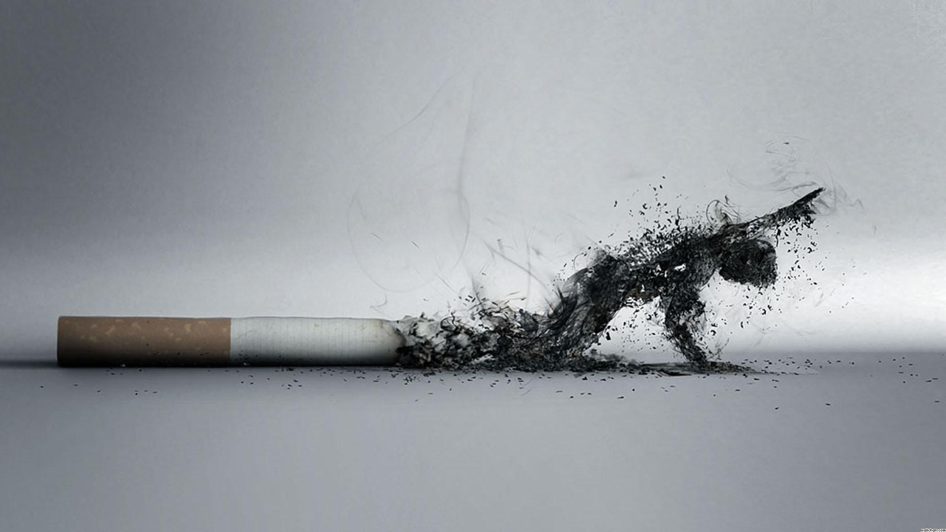 Hasil gambar untuk smoking