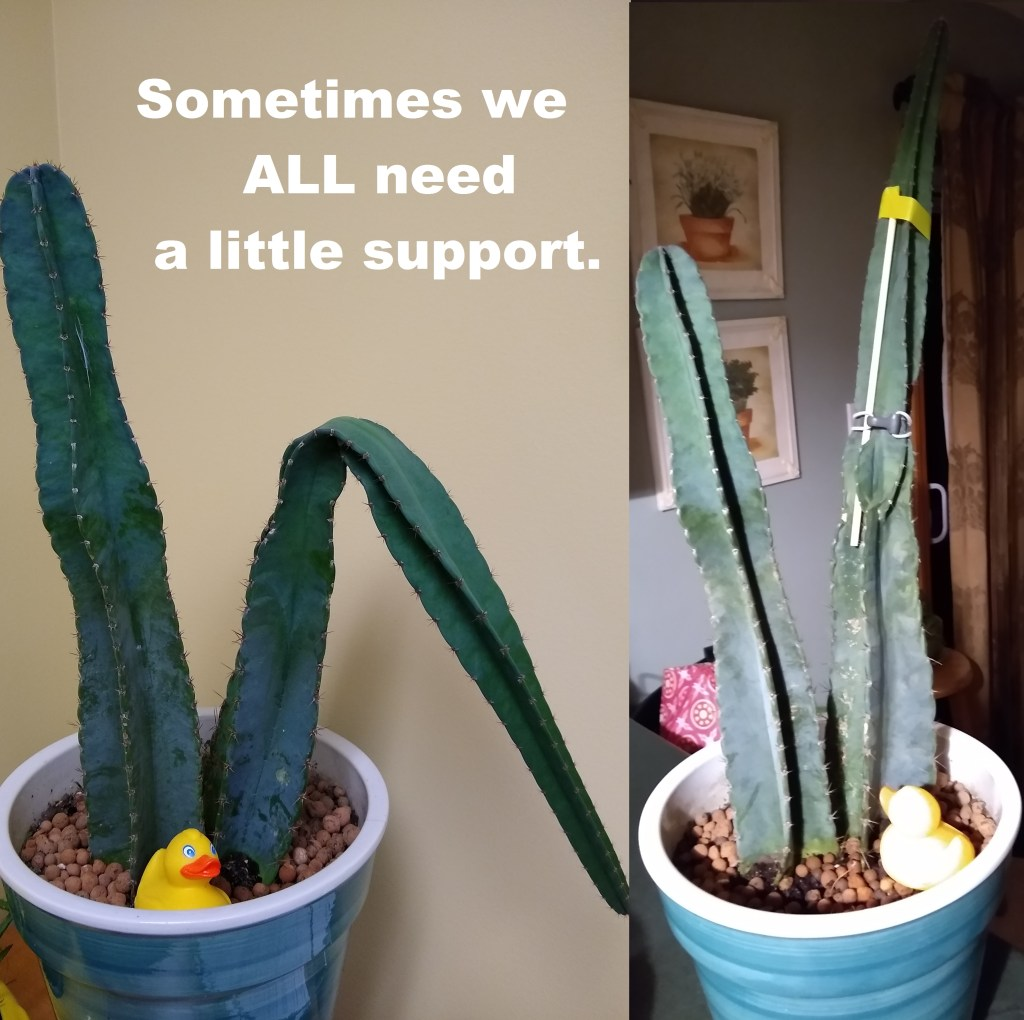 Sometimes we ALL need a little support.